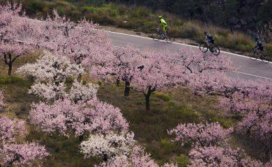 Cyclistes ! Février : le printemps à l'horizon ! OVERSTIM.s